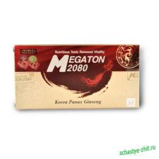 «Мегатон 2080»